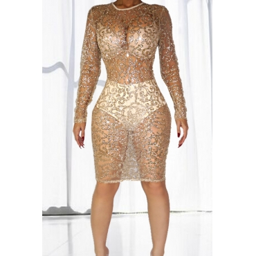 Sexy Round Neck Long Sleeves See-Through Khaki Lace Sheath Knee Length Dress (Include Briefs)