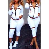 Leisure Turndown Collar Long Sleeves Zipper Design White Knitting Two-piece Pants Set