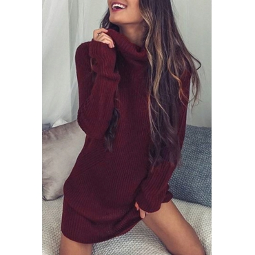 Lovely Euramerican Turtleneck Long Sleeves Wine Red Wool Mini Dress