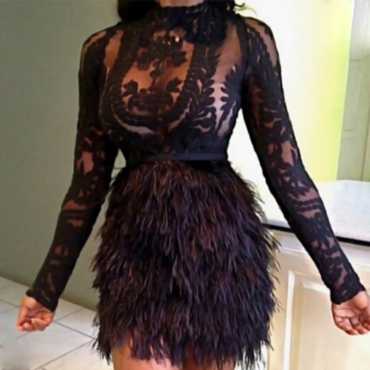Sexy Mandarin Collar Feather Decoration Embroidery Design Black Polyester Two-piece Skirt Set