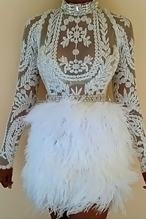Lovely Sexy Mandarin Collar Feather Decoration Embroidery Design White Polyester Two-piece Skirt Set(Without Belt)<br>