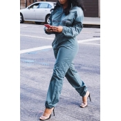 Lovely Casual Long Sleeves Deep Blue Two-piece Pants Set