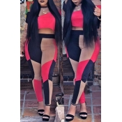 Lovely Casual Patchwork Red Knitting Two-piece Pants Set