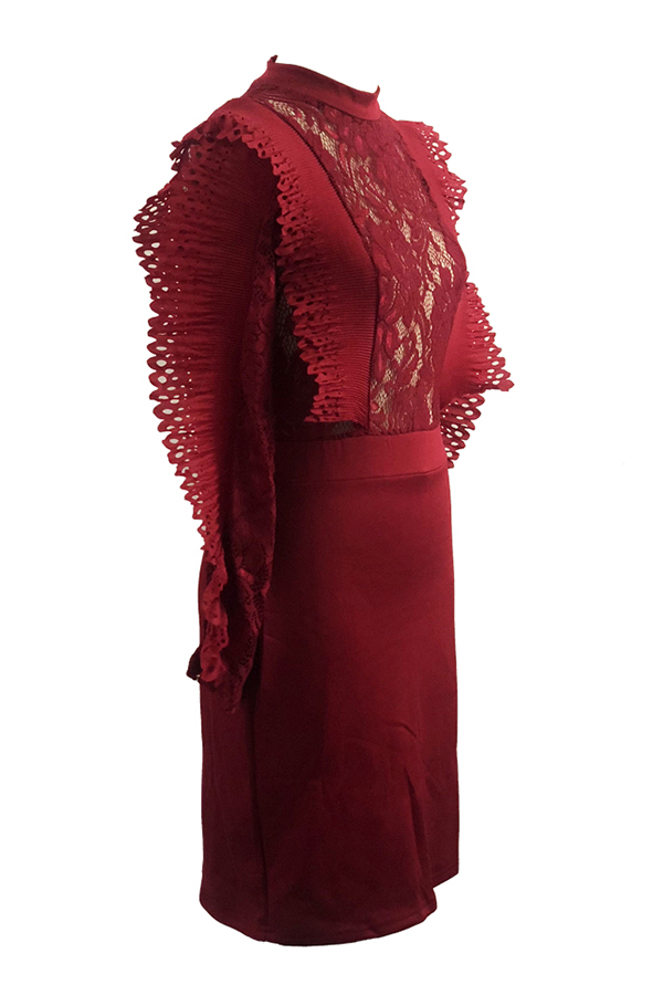 Minivestido Elegante Y Encantador De Encaje Rojo Vino De Encaje Transparente