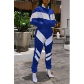 Lovely Casual Color-block Patchwork Royal Blue Two-piece Pants Set