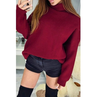 Lovely Casual Turtleneck Red Knitting Sweaters