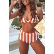 Lovely Sexy Striped Croci Bikinis