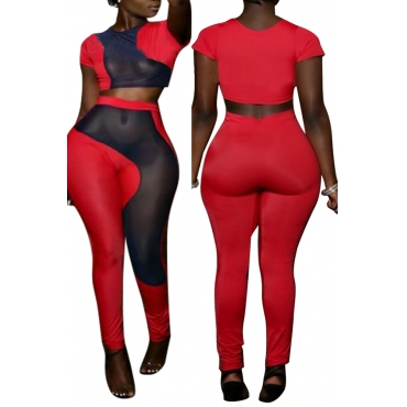 Lovely Casual Mesh Patchwork Red Two-piece Pants Set
