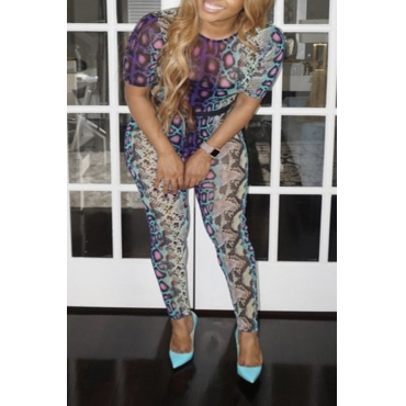 Lovely Casual Snakeskin Pattern Printed Blue Two-piece Pants Set