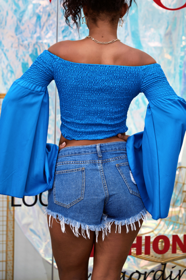 Lovely Casual Off The Shoulder Flare Sleeve Blue Blouse