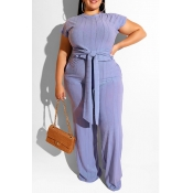 Lovely Casual Knot Design Baby Blue Plus Size Two-