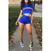 Lovely Sportswear Half A Turtleneck Pinstripe Roya