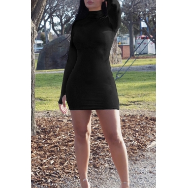 Lovely Casual Turtleneck Skinny Black Mini Dress