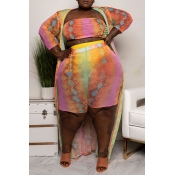 Lovely Casual Printed Multicolor Plus Size Two-Pie