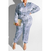 Lovely Casual Printed Grey  Plus Size One-piece Ju