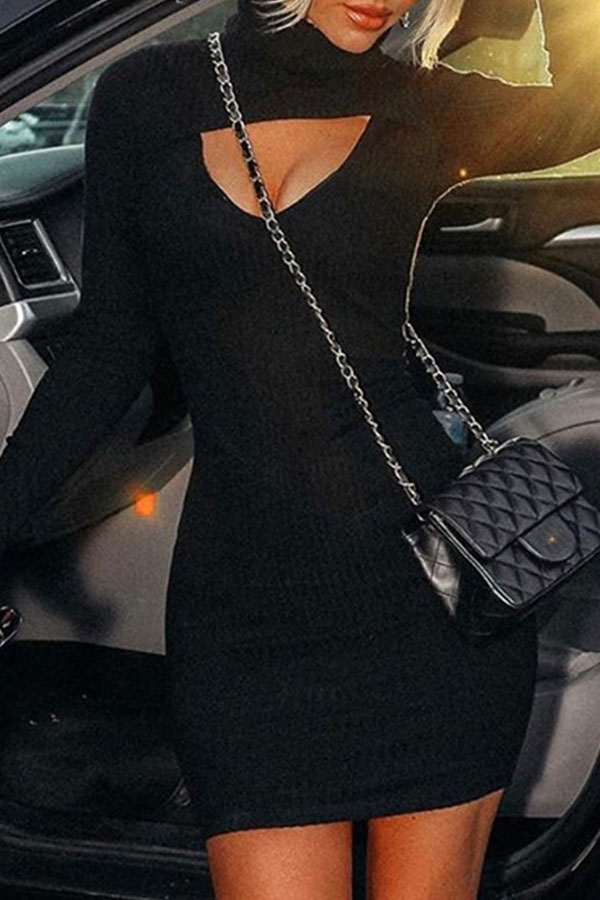 Lovely Casual Turtleneck Hollow-out Black Mini Dress