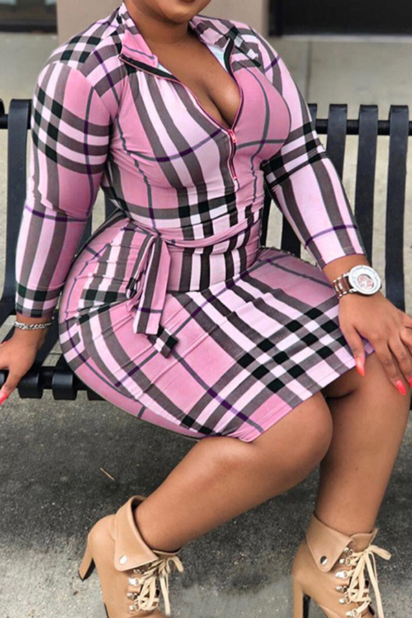 Lovely Casual Plaid Printed Pink Plus Size Mini Dress