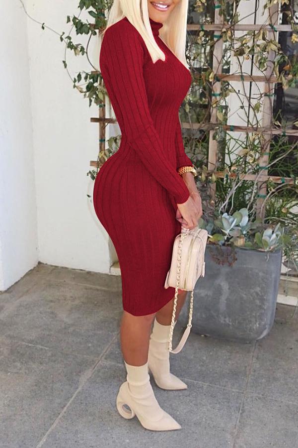 Lovely Leisure Turtleneck Skinny Wine Red Knee Length Dress