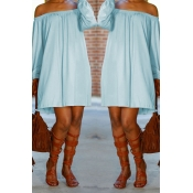 Lovely Casual Dew Shoulder Baby Blue Mini Dress