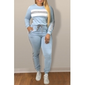 Lovely Leisure Patchwork Baby Blue Two-piece Pants