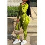Lovely Sportswear Patchwork Green Two-piece Pants Set