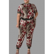 Lovely Casual Snakeskin Print Plus Size Two-piece