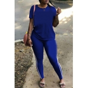 Lovely Casual Basic Royal Blue Plus Size Two-piece