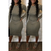 Lovely Casual Striped Grey Knee Length Dress