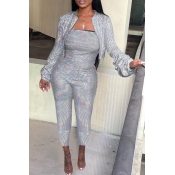 Lovely Casual Striped Silver Two-piece Pants Set