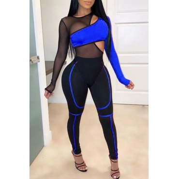 Lovely Sexy Patchwork Blue Two-piece Pants Set