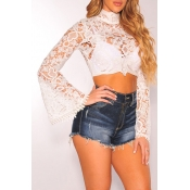 Lovely Sweet Lace White  Blouse