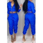 Lovely Casual V Neck  Button Blue Two-piece Pants