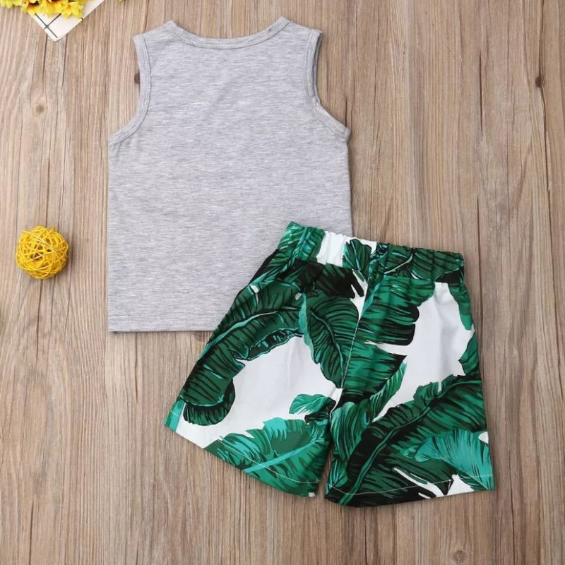 Lovely Leisure Print Grey Boy Two-piece Shorts Set