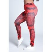 Lovely Sportswear Print Red Leggings
