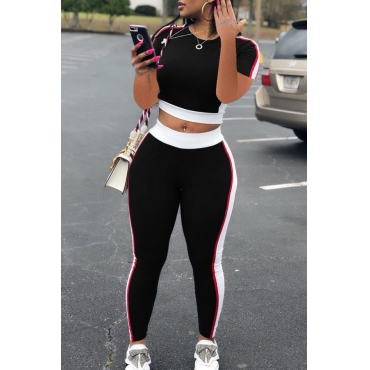 Lovely Casual Patchwork Black Plus Size Two-piece Pants Set