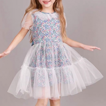Lovely Sweet See-through Multicolor Girl Knee Length Dress