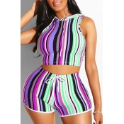 Lovely Stylish Striped Purple Plus Size Two-piece