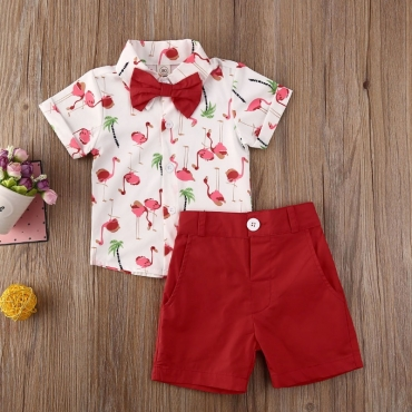 lovely Leisure Turndown Collar Print Red Boy Two-piece Shorts Set