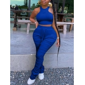 lovely Stylish Fold Design Blue Plus Size Two-piece Pants Set