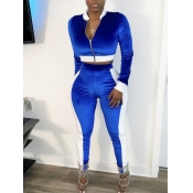 lovely Sportswear Patchwork Zipper Design Blue Two