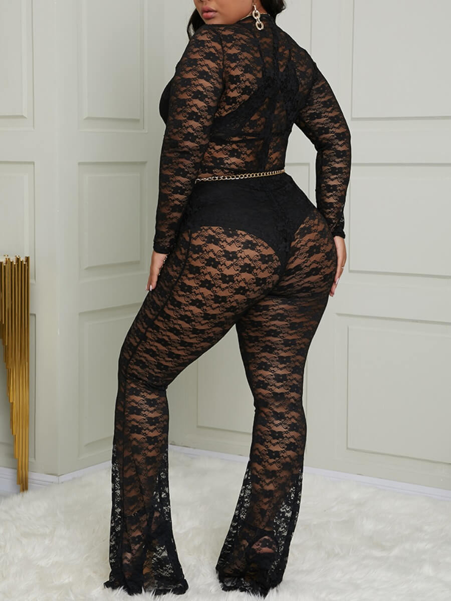 Lovely Sexy Lace See-through Black Plus Size One-p