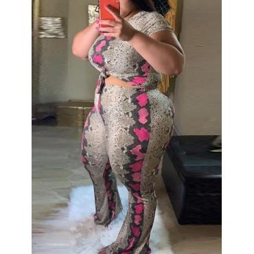 LW Plus Size O Neck Leopard Print Pants Set