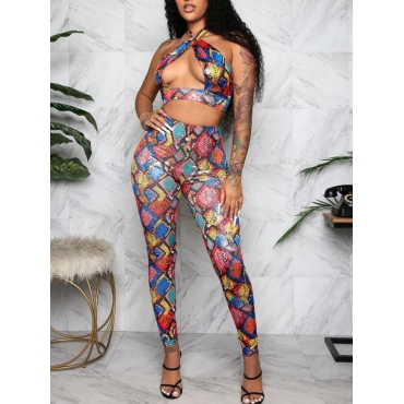 LW SXY Mixed Print Hollow-out Multicolor Two Piece Pants Set
